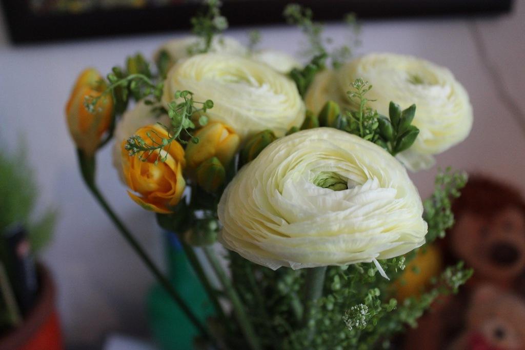 NewPix.ru - Азиатские лютики. Ранункулюсы - розы весны.