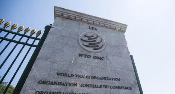 ВТО признала правоту России в споре с ЕС по поводу незаконности третьего энергопакета