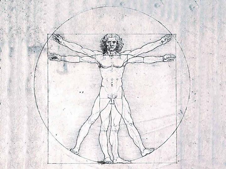 Морфогенетические поля и «поля сознания»