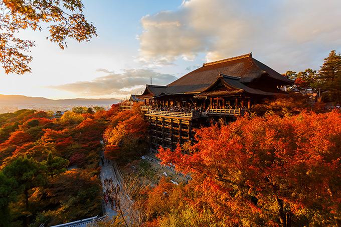 Осенний пейзаж в Киото, Япония - храм Киёмидзу-дэра
