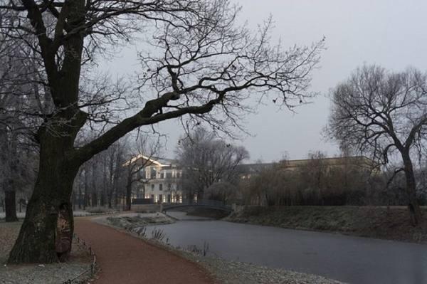 В Петербурге из-за шторма закрыли сады