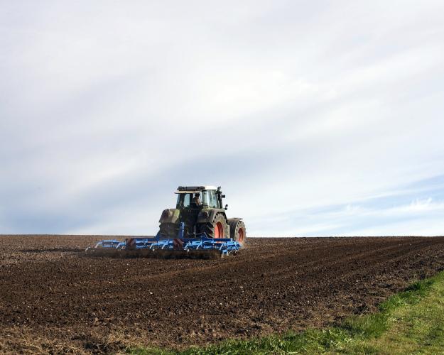 Минсельхоз: площадь посевов-2017 вырастет на 600 тыс. га