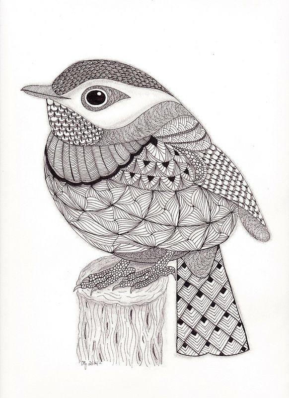 Животные, птицы, насекомые. …