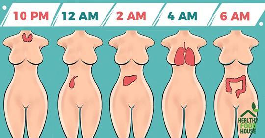 Вот из-за чего вы просыпаетесь в одно и то же время каждую ночь