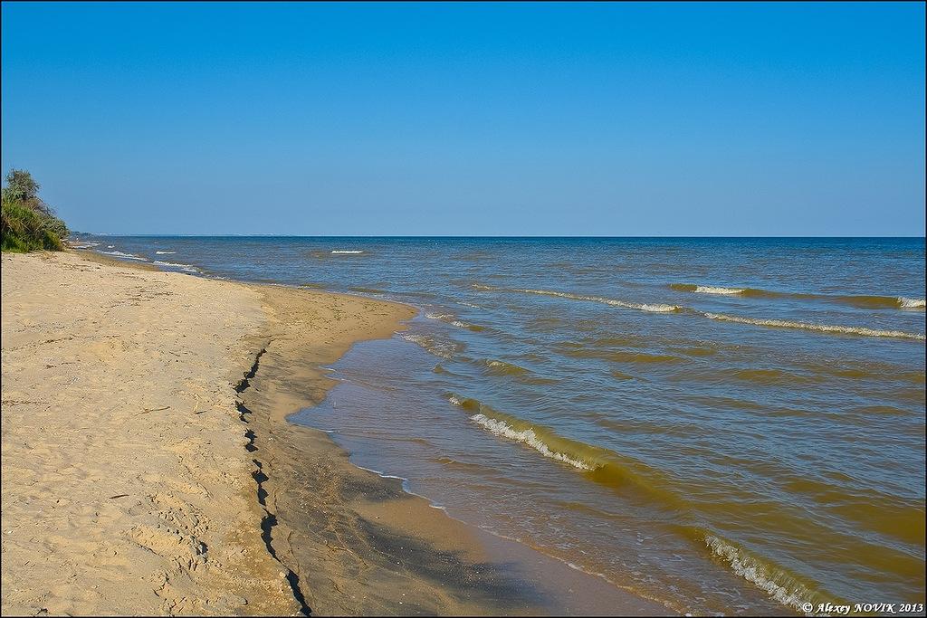 Фотопрогулки.   Дикие берега Азова