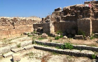 В Сирии возобновят раскопки древнего Угарита