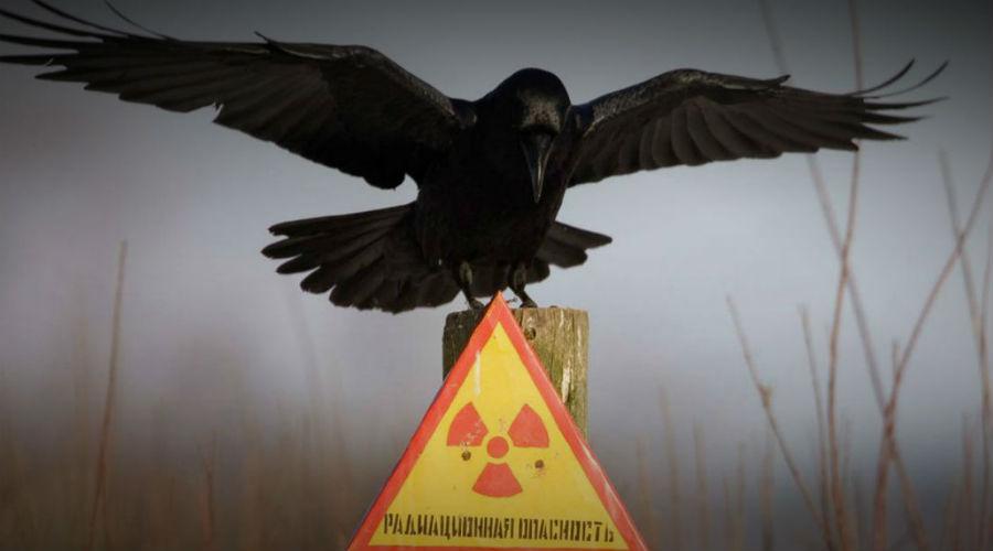 Кыштым: страшная тайна СССР