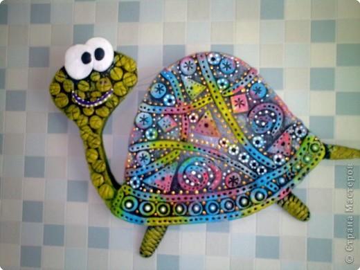 Лепка: черепашка Гипс. Фото 1
