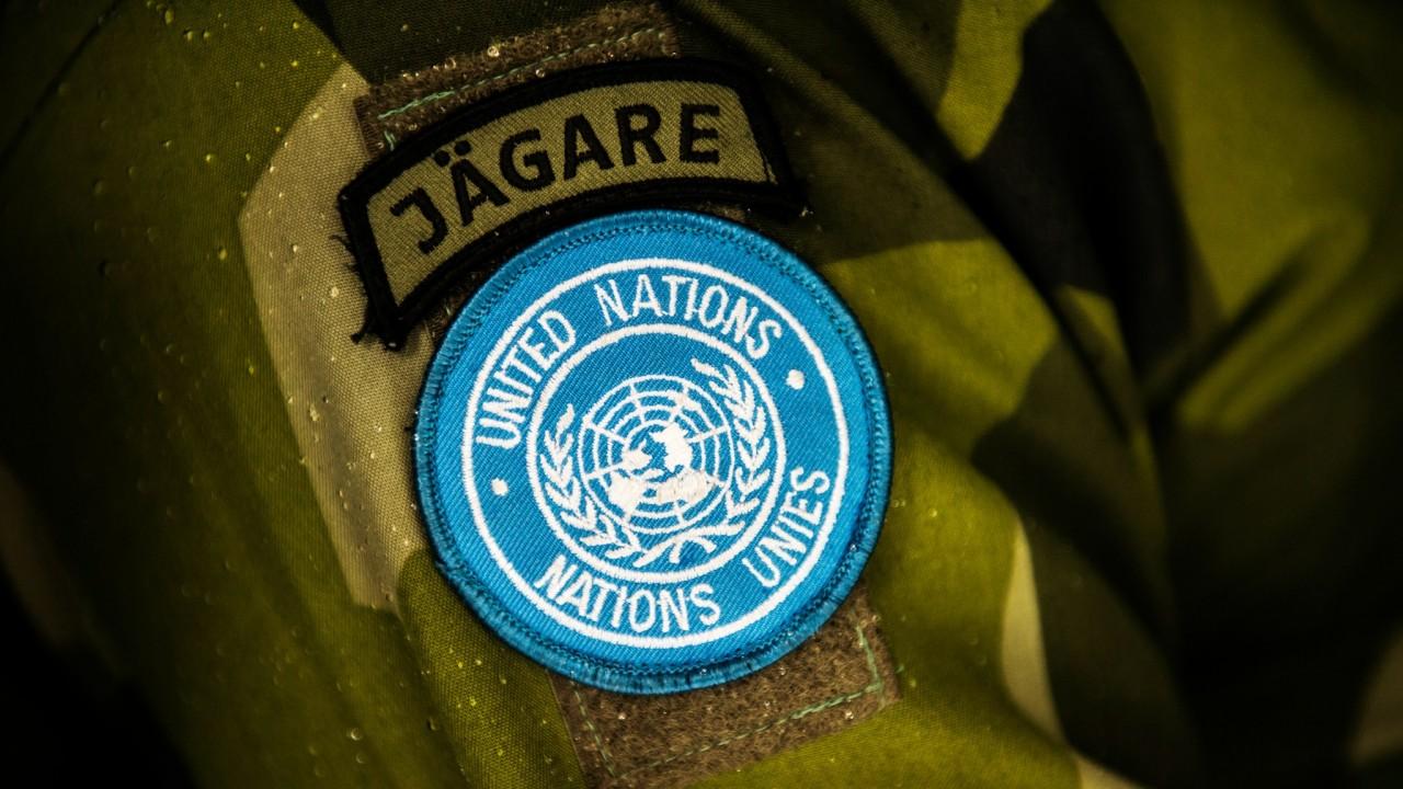 Названо условие, при котором миротворцы Швеции смогут войти на Донбасс