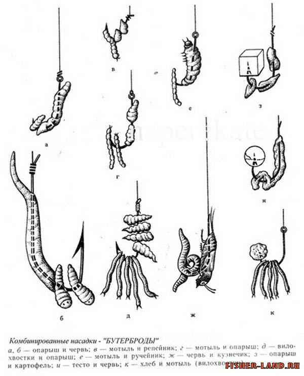 рыбалка пучок червей на крючок