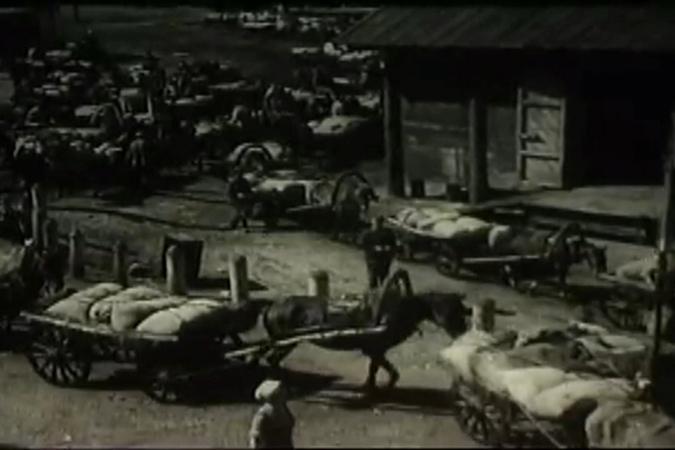 Великая Отечественная: «Кому война, а кому мать родна»