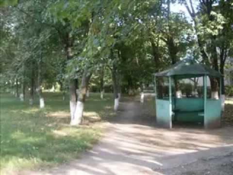 Фильм про Кринички