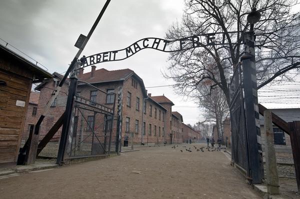 Польская прокуратура проверяет призывы отправить беженцев в Освенцим