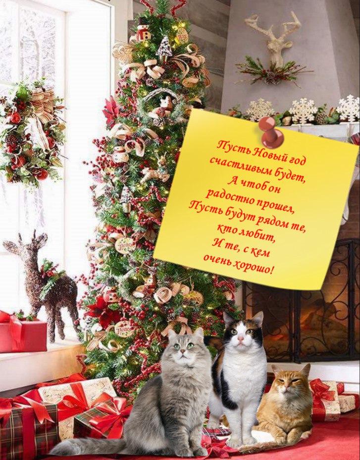 Подборка новогодних и всяких…