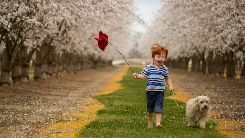 Он нашел дорогу к счастью! дети, счастье