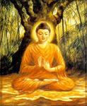 8 уроков от Будды