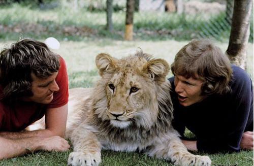 леденец. люди по имени лев важно, будь