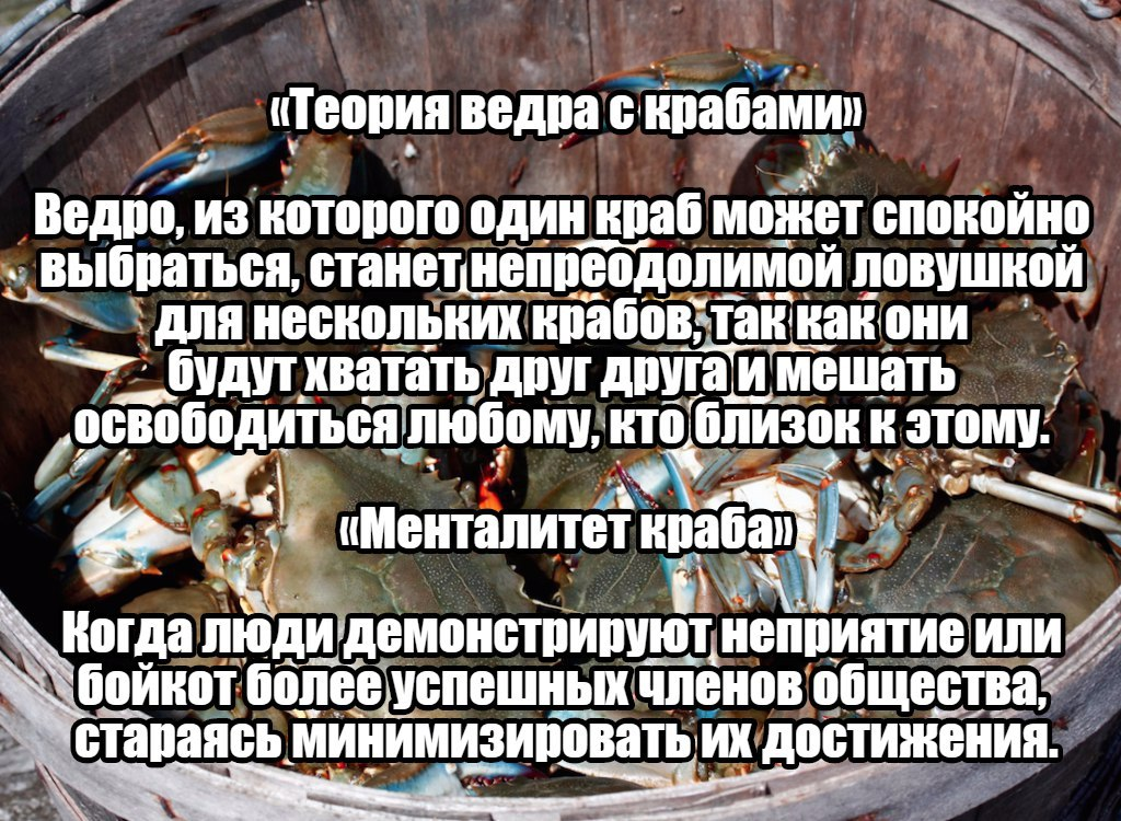 Запись за 28.11.2017 11:00:00 +0200