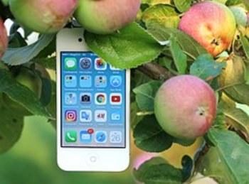Какой будет цена нового iPhone 8