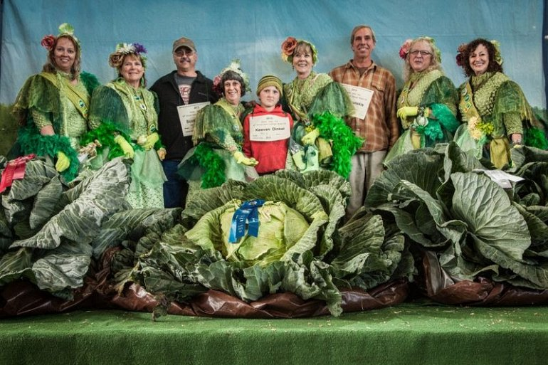 Почему на Аляске растут овощ…