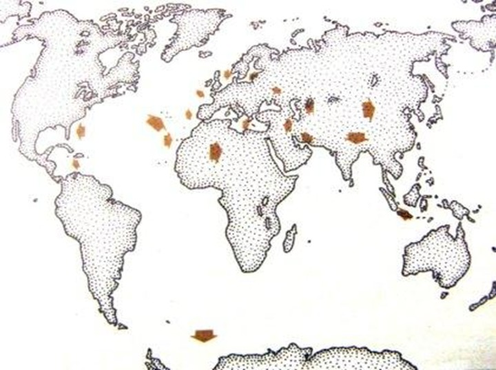 Локализация Атлантиды