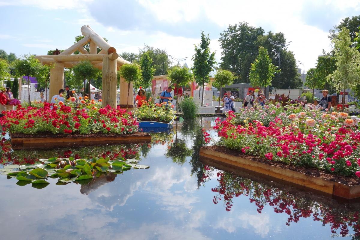 Клумбы в Парке Горького, Москва