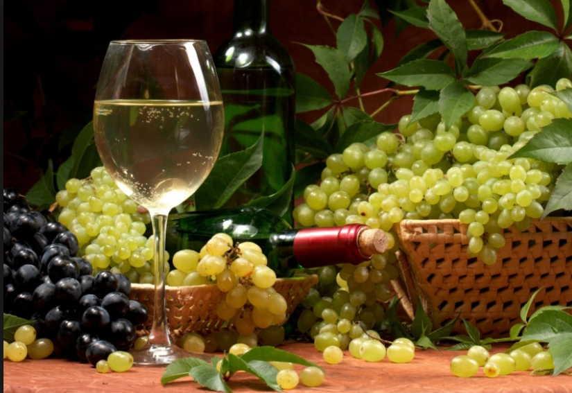 Что лечит виноград: очищаем сосуды, забываем о подагре! Всем хороши эти ягоды и листья!