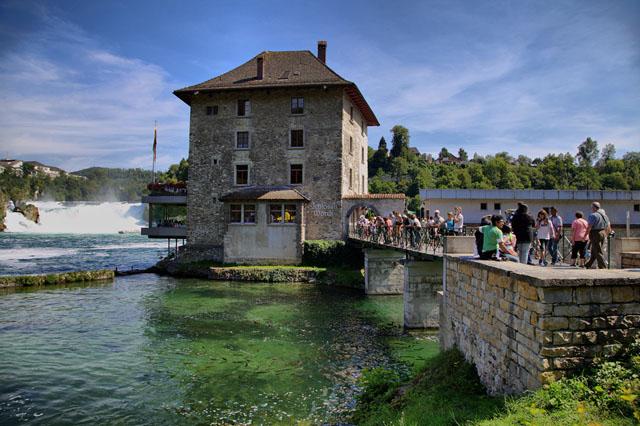Туристы подкармливают рыбу с моста у Рейнского Водопада