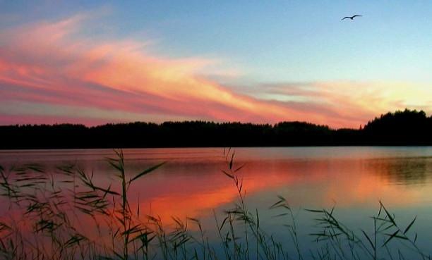 8 российских озер, в которых видели чудовищ