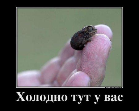 http://mtdata.ru/u24/photoC979/20409841410-0/original.jpg#20409841410