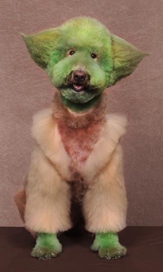 Необычный конкурс сумасшедших собачьих стрижек