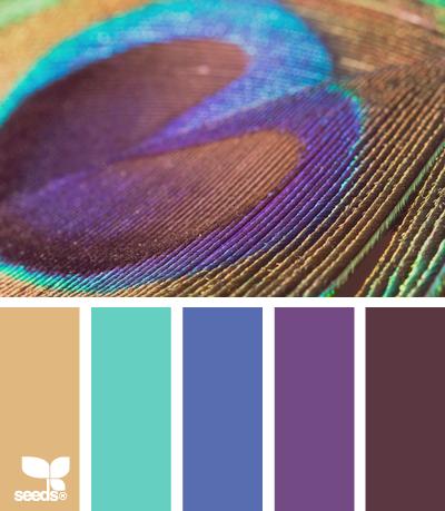 пернатые цвета