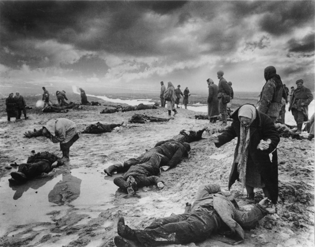 19. Поиск родственников среди погибших, Крым, 1942 г. исторические фотографии, история, фото