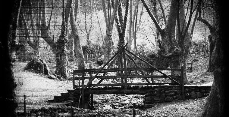 Деревня, где началась охота на ведьм