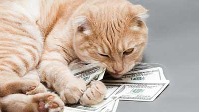День дурака на финансовых рынках
