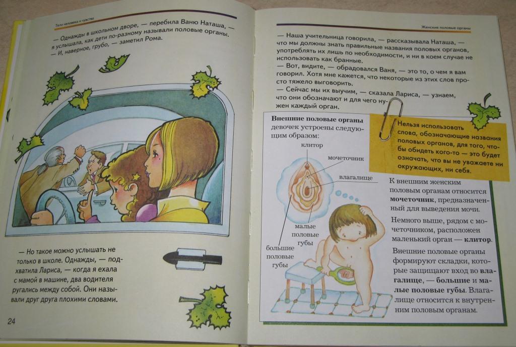 Урок 'сексуальное воспитание ребенка' во 2м классе ребенок, секс, школа