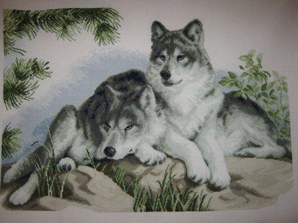 Два волков вышивка крестом