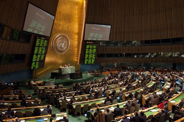 Украинскую делегацию выгнали с сессии ООН за демарш с флагом