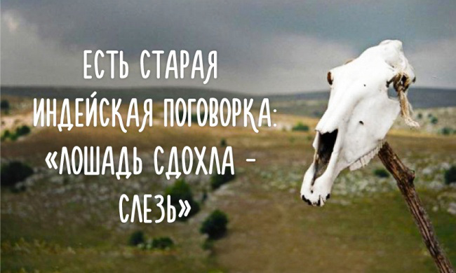 Не оживляйте дохлую лошадь!