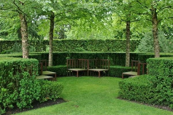 Зеленые комнаты в ландшафтном дизайне