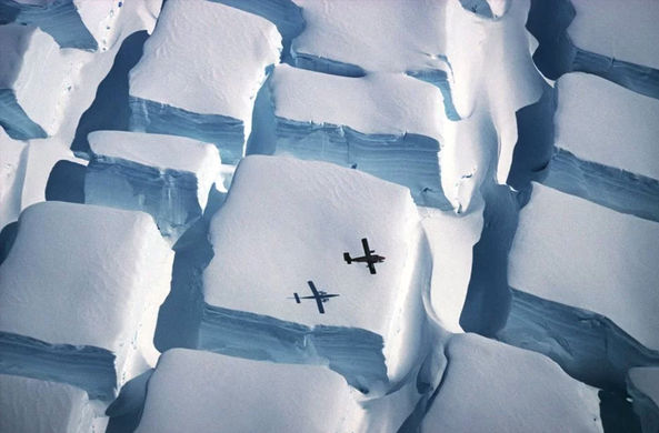 От сахарной Антарктики до портрета тихоходки: названы лучшие фото о жизни на Земле