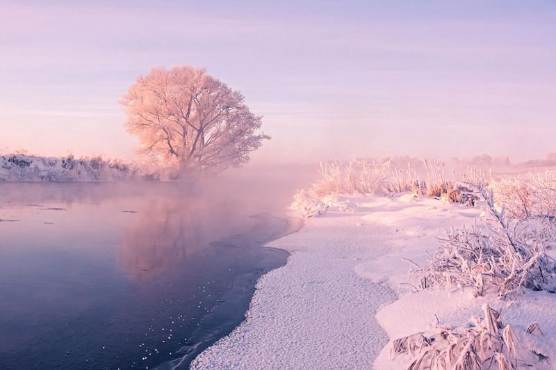 Белорусский фотограф встаёт рано на рассвете, чтобы запечатлеть красоту зимы