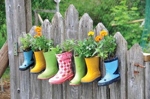 Фото цветов - Как украсить сад и..