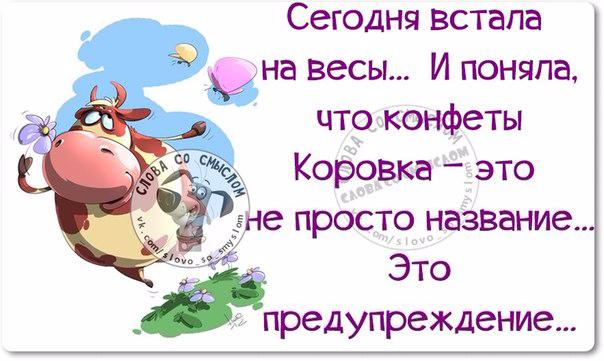 1432150699_frazki-16 (604x361, 221Kb)