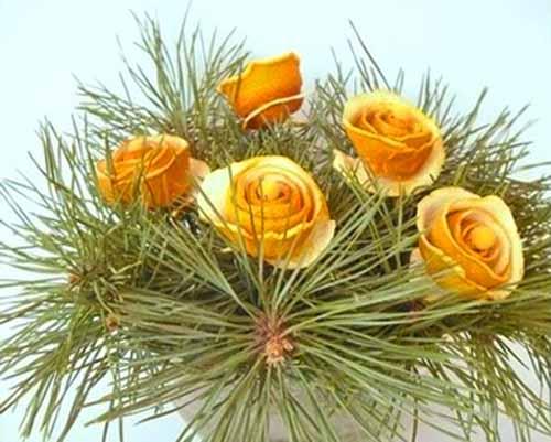 Новогодний декор из мандарин…