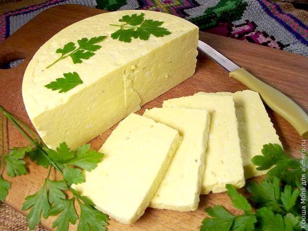 Сыр быстрого приготовления в домашних условиях