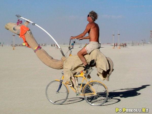 Петя хотел, чтобы родители подарили ему подушку. Но они подарили велосипед. Всю ночь он проплакал лицом в педали...