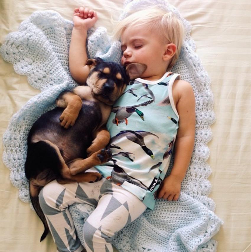 Мальчик, милота, пес, собака, щенок, ребенок