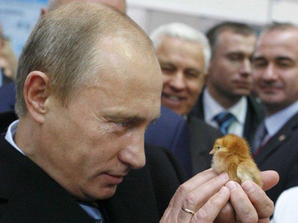 Запад прозевал новый шаг Владимира Путина