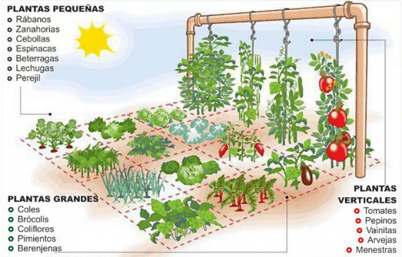 огород на одной сотке: : Органическое земледелие, пермакультура